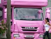 Beautiful Pink Horsebox