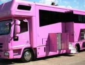 Hot-pink horse transport