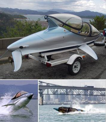 innespace dolphin freestyle watercraft