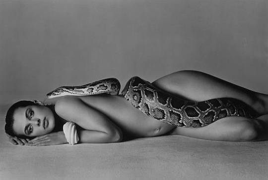 Richard Avedon's 'Natassia Kinski and the serpent'
