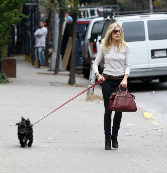Actress, model and fashion designer, Sienna Miller has always had pooches in her life.