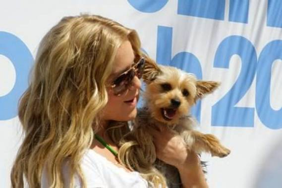 The American television personality has no qualms about sharing her fame, glory and even modeling with her Yorkshire Terrier, Bardot.