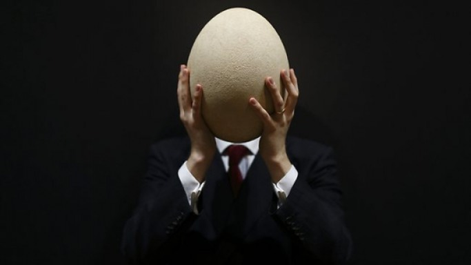 Christie's to Auction Giant Egg From Extinct Elephant Bird For Around $45,000